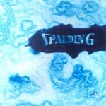 SPALDING II